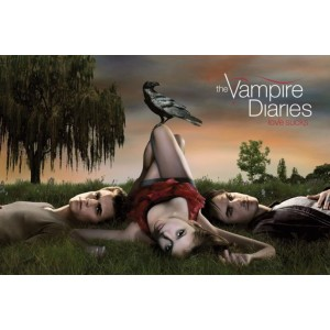 Poster The Vampire Diaries : Damon, Stefan et Elena